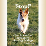 How to control predatory chasing in dogs