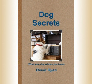 Dog Secrets – Out Now