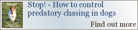 Stop! How to control predatory chasing in dogs - book available now