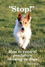 """Stop!"" How to control predatory chasing in dogs"